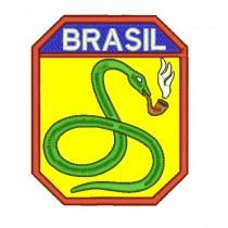 Patch FEB Cobras Fumantes